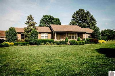 Marshall County Single Family Home For Sale: 466 N County Line Rd