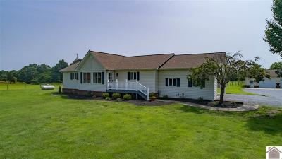 Murray Single Family Home For Sale: 1376 Airport