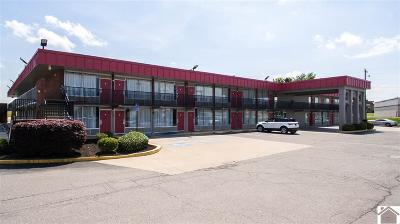 McCracken County Commercial For Sale: 5210 Hinkleville Road