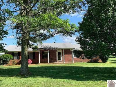 Graves County Single Family Home For Sale: 4311 St Rt 94 W
