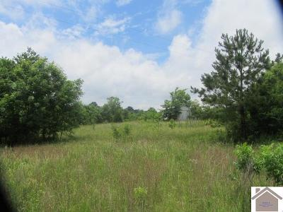 Graves County Residential Lots & Land For Sale: 625 Seay Graveyard Road