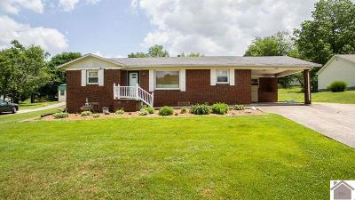 Princeton Single Family Home For Sale: 728 Cecile Drive