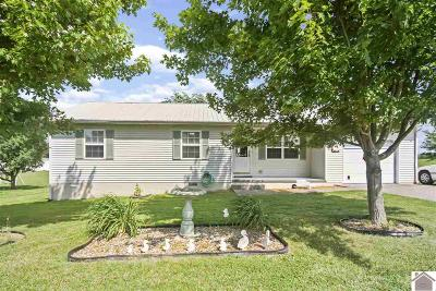 Graves County Single Family Home For Sale: 1828 S 10th St