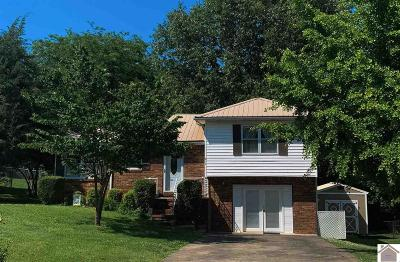 Paducah Single Family Home For Sale: 214 Windmere Dr