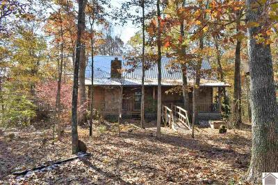 Calloway County, Marshall County Single Family Home For Sale: 255 Yarborough Dr