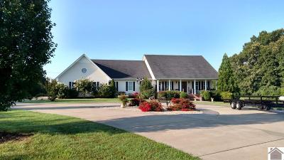 Calloway County, Marshall County Single Family Home For Sale: 2315 Irvin Cobb Road