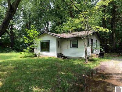McCracken County Single Family Home For Sale: 2234 Sunset Drive