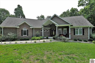 Calloway County, Marshall County Single Family Home For Sale: 178 Primrose