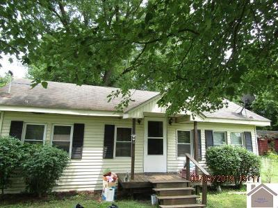 Paducah Single Family Home For Sale: 408 Ward
