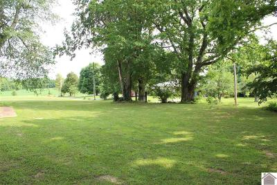 Caldwell County Residential Lots & Land For Sale: 107 Meadow Brook Lane