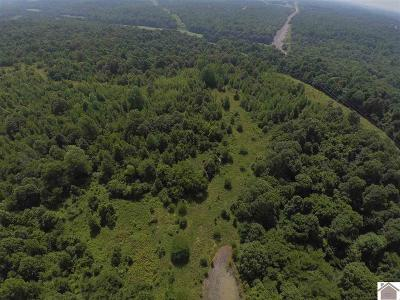 Eddyville Residential Lots & Land For Sale: 2661 Elkhorn Tavern Road
