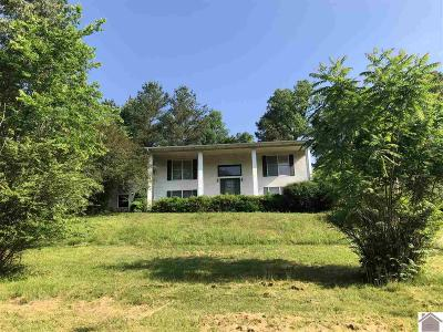 Single Family Home For Sale: 120 Jean Spann Wilson Rd