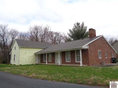 McCracken County Single Family Home For Sale: 150 Nolan Drive