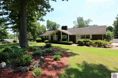 Livingston County, Lyon County, Trigg County Single Family Home For Sale: 616 Redbud Drive
