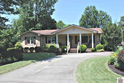 Calloway County Single Family Home For Sale: 900 Meadow Lane