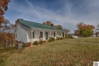 Calloway County, Marshall County Single Family Home For Sale: 534 Driftwood
