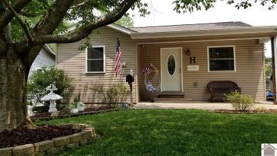 Murray Single Family Home For Sale: 600 Vine
