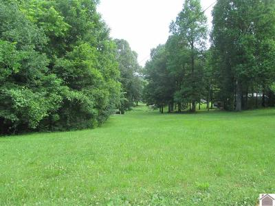 Lyon County Residential Lots & Land Contract Recd - See Rmrks: Saratoga Heights