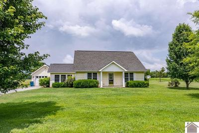McCracken County Single Family Home For Sale: 8035 Palestine School Road