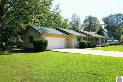 Cadiz Single Family Home For Sale: 693 Blue Springs Blvd