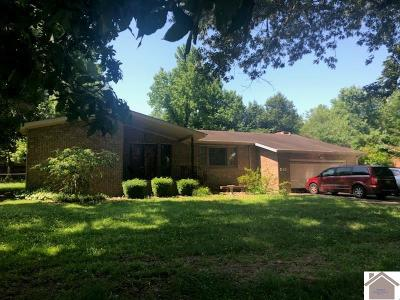 Paducah Single Family Home For Sale: 245 Tudor Drive