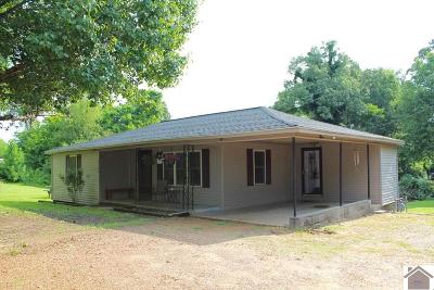 Paducah Single Family Home For Sale: 6122 Old Mayfield Road