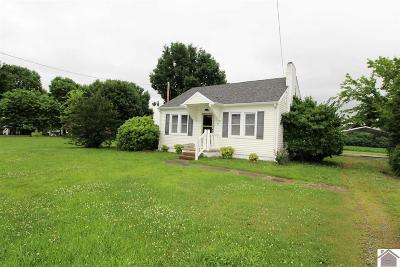 Graves County Single Family Home For Sale: 64 E State Route 348
