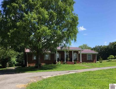 Ballard County Single Family Home For Sale: 6350 Paducah Road