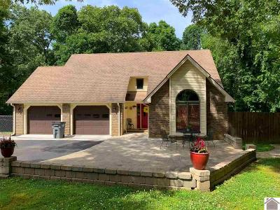 Single Family Home For Sale: 240 Hidden Hills