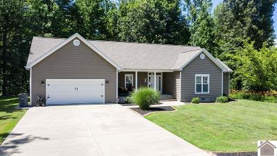 McCracken County Single Family Home For Sale: 8265 Danube