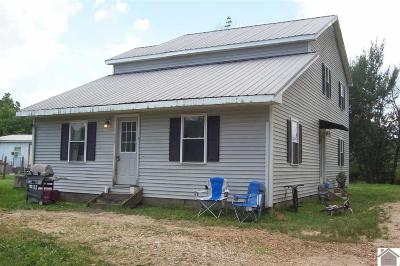 Graves County Single Family Home For Sale: 1175 St Rt 348 W