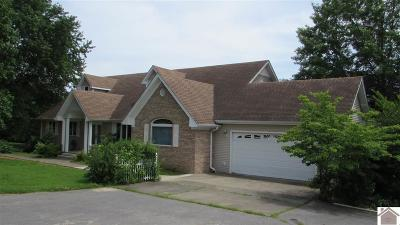 Graves County Single Family Home For Sale: 5645 State Route 849 E
