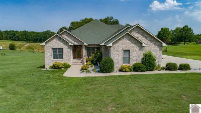 Lyon County, Trigg County Single Family Home For Sale: 186 Caney Creek