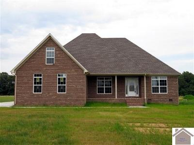 Calloway County, Marshall County Single Family Home For Sale: 68 North Drive