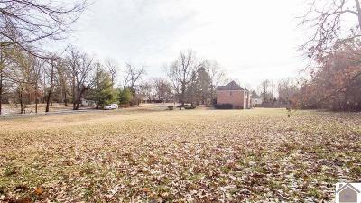 McCracken County Residential Lots & Land For Sale: 599 Friedman Lane
