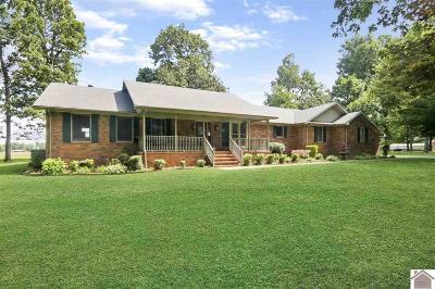 Calloway County Single Family Home For Sale: 119 Dogwood Ln