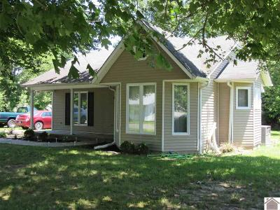Graves County Single Family Home For Sale: 64 S St. Paul