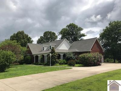 Calloway County, Marshall County Single Family Home For Sale: 346 Eagle Lake Dr.