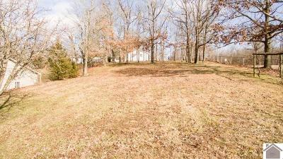 Residential Lots & Land For Sale: Lot1 Railroad Hill Road