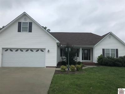 Graves County Single Family Home For Sale: 338 Smith Lane