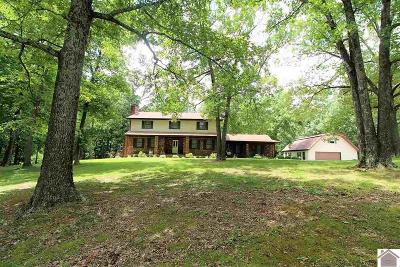 Marshall County Single Family Home For Sale: 2812 Big Bear Hwy