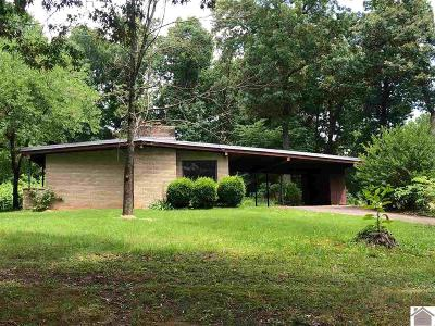 Marshall County Single Family Home For Sale: 164 Howards Grove Rd