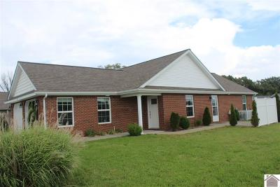 Calloway County, Marshall County Single Family Home For Sale: 9 Master