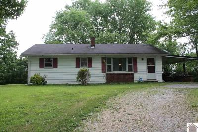 Single Family Home For Sale: 1796 State Route 903