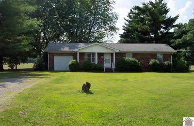 McCracken County Single Family Home For Sale: 6625 Metropolis Lake Road