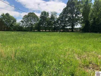 Marshall County Residential Lots & Land For Sale: 423 Penny Road