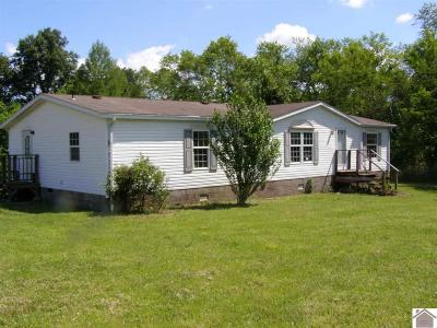 Paducah Manufactured Home For Sale: 2325 Lovelaceville Florence Station W.
