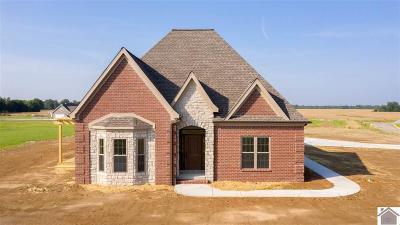 Paducah Single Family Home For Sale: 1550 Falcons Ridge Blvd