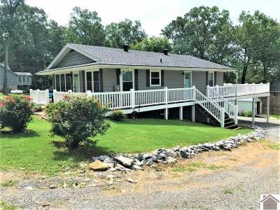 Cadiz Single Family Home For Sale: 41 Nancy Avenue