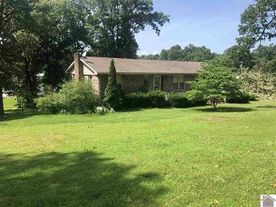 Marshall County Single Family Home For Sale: 25 Dogwood Hills Club Rd.